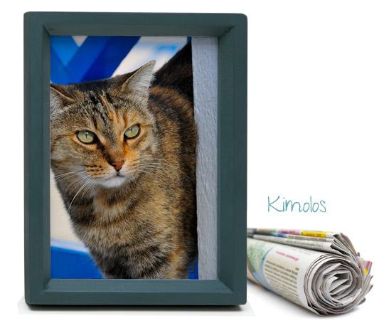 Kimolos cats