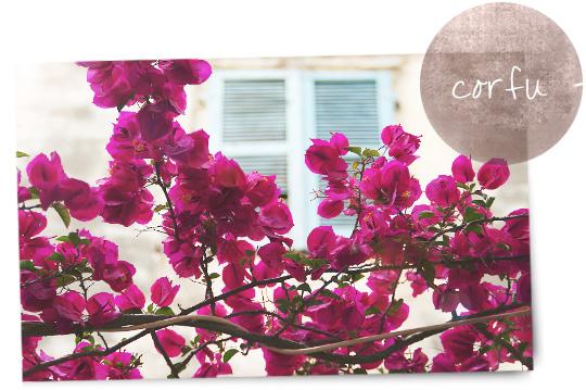 Corfu Island travel guide