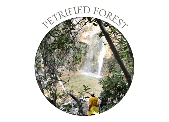 Evia Petrified Forest