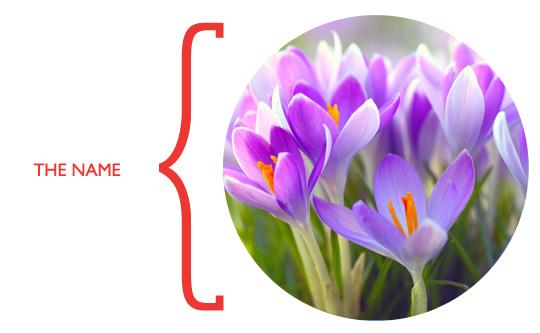 saffron_name