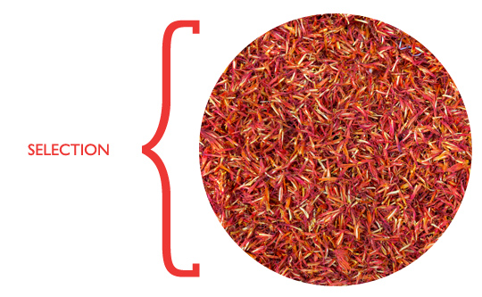 saffron_selection