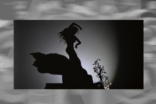 Teodosio Sectio Aurea shadows magi