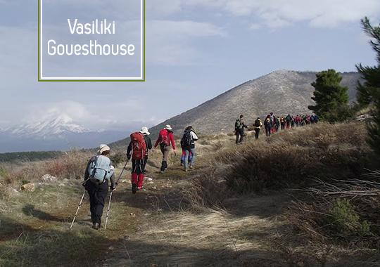 Vassiliki_Guesthouse