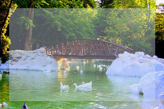 athens lake zappeion