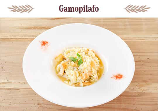 04.gamopilafo