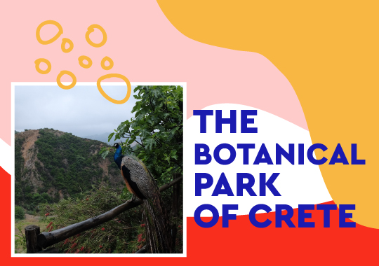 botanical park of crete