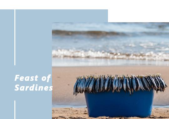03.Feast_of_Sardines