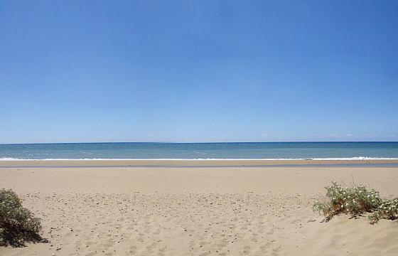 Lot  Island Beach Road Island Beach