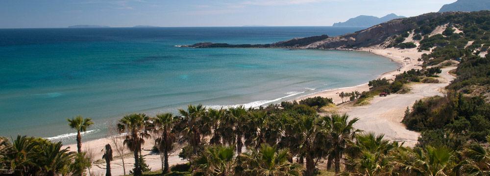 Paradise beach events